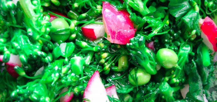 dlaczego warto jadać brokuły