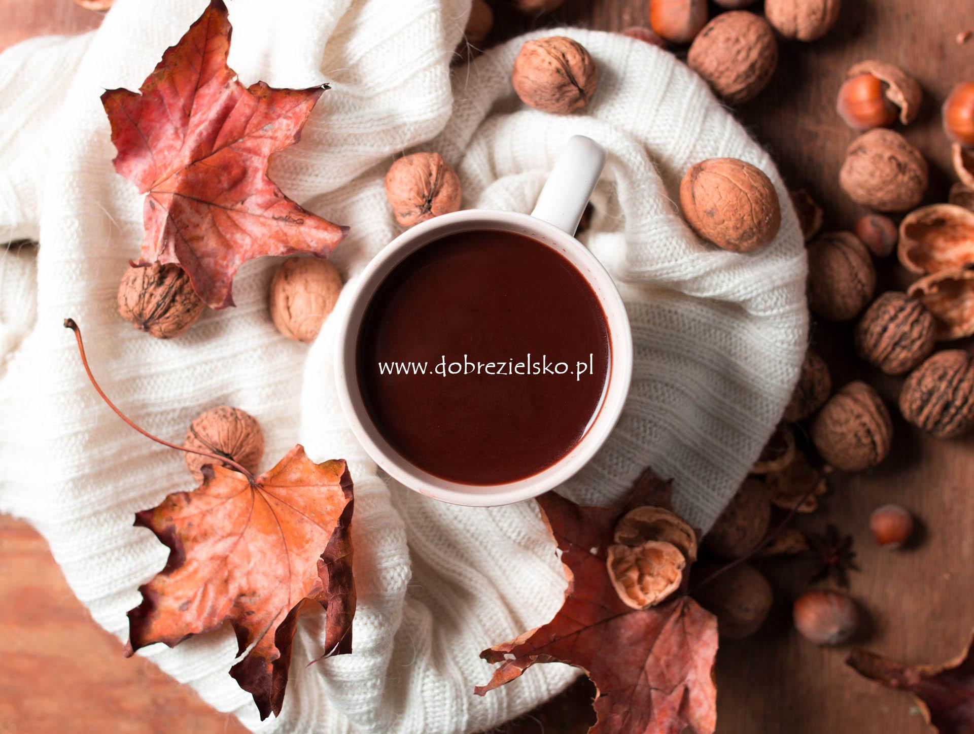 Gorąca rozgrzewająca czekolada
