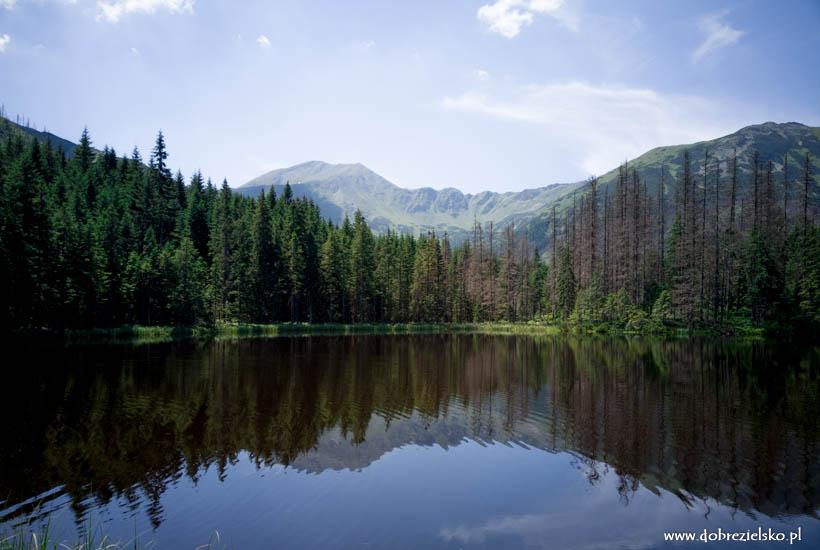 Smreczyński Staw w Tatrach Zachodnich