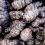 Co to jest topinambur, czyli zdrowy słonecznik bulwiasty