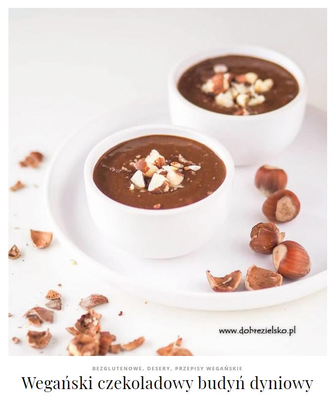 wegański czekoladowy budyń jaglany dyniowy desery bez glutenu